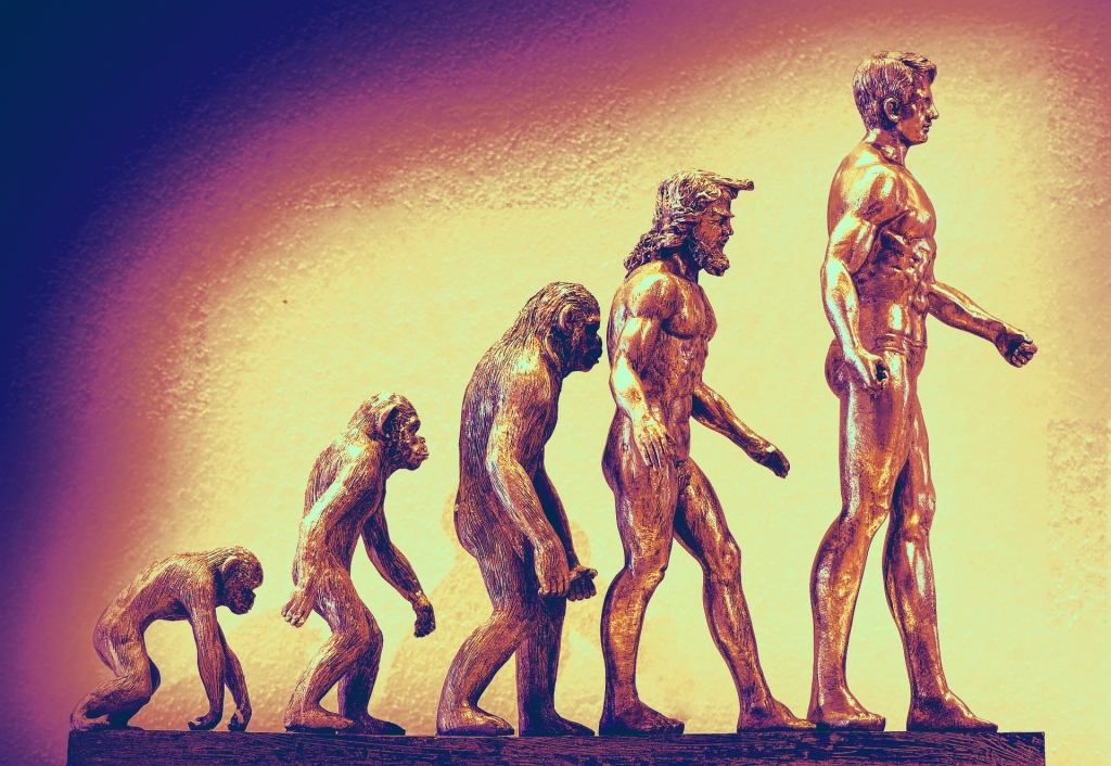"Humorous digital illustration of ""The Evolution of Man"": There is no end game to Evolution... no progress... no goal... no teleology. Just balance."